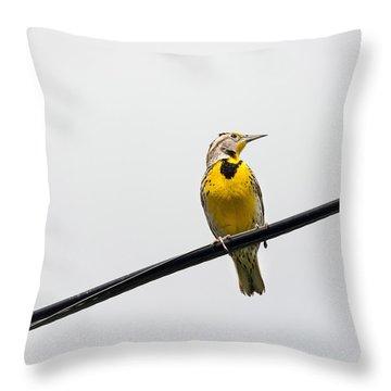 Yellow Bird Throw Pillow by Rebecca Cozart