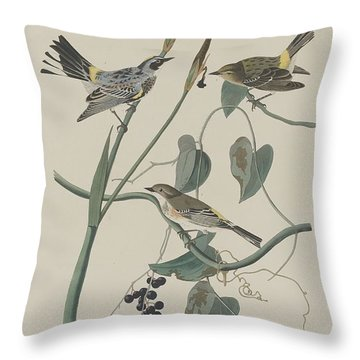Yellow-crown Warbler Throw Pillow by John James Audubon