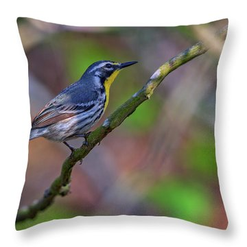 Yellow-throated Warbler Throw Pillow by Rick Berk