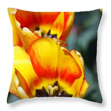 Yellow Tulip Throw Pillow by Marty Koch