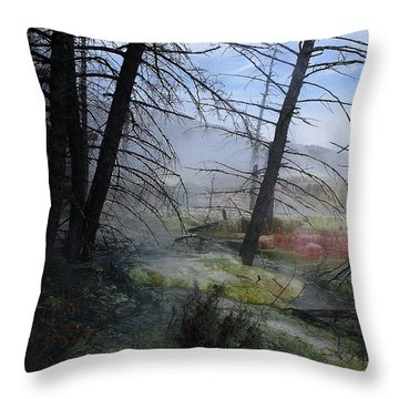 Yellowstone National Park 4 Throw Pillow by Xueling Zou