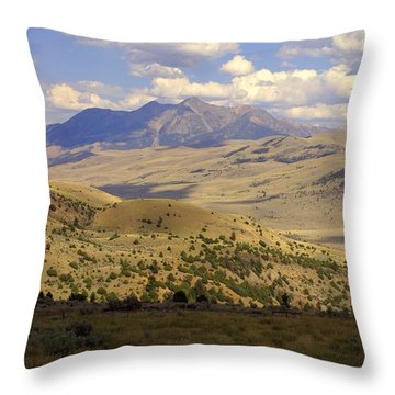 Yellowstone View Throw Pillow by Marty Koch