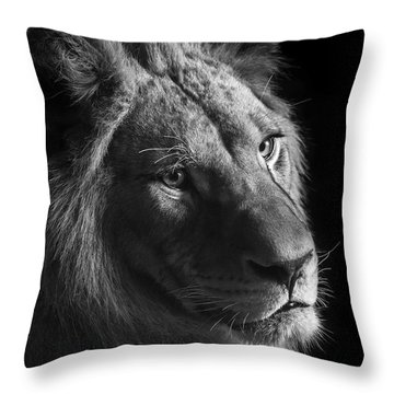 Young Lion In Black And White Throw Pillow by Lukas Holas