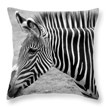 Zebra - Here It Is In Black And White Throw Pillow by Gordon Dean II