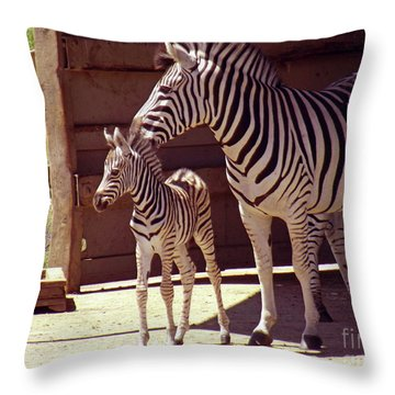 Zebra Mom And Baby Throw Pillow by Methune Hively