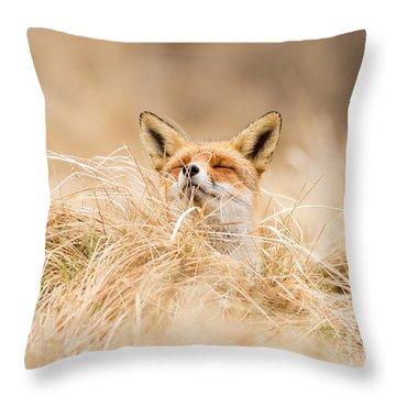Zen Fox Series - Zen Fox 2.7 Throw Pillow by Roeselien Raimond