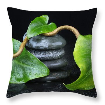 Zen... Throw Pillow by Manfred Lutzius