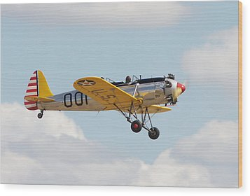 Come Fly With Me Wood Print by Pat Speirs