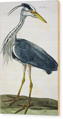 The Heron  Wood Print by Peter Paillou