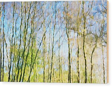 Tree Reflections Abstract Wood Print by Natalie Kinnear