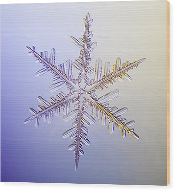 A Real Snowflake Showing The Classic Wood Print by Marion Owen