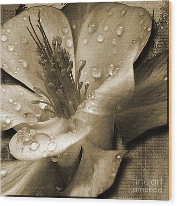 Beauty II Wood Print by Yanni Theodorou