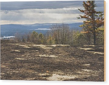 Burnt Blueberry Field In Maine Wood Print by Keith Webber Jr