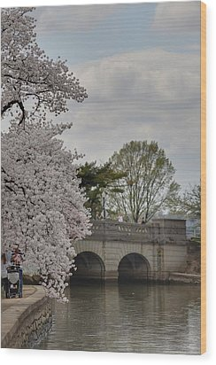Cherry Blossoms - Washington Dc - 011328 Wood Print by DC Photographer
