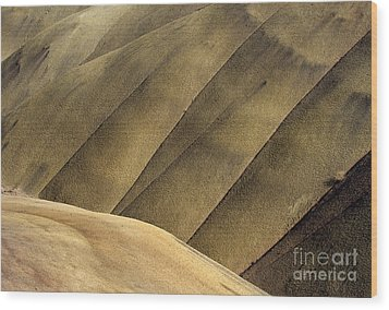 Desert Lines Wood Print by Mike  Dawson