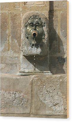 Duron Fontain Wood Print by Leo Cavallo