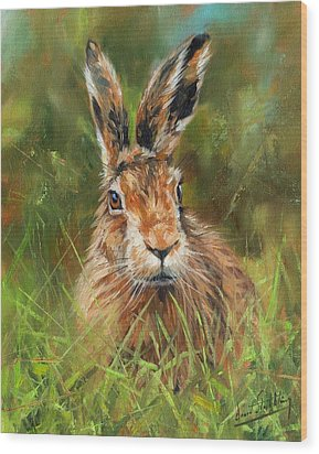 hARE Wood Print by David Stribbling