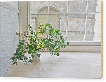 House Plant Wood Print by Tom Gowanlock