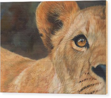 Lioness Wood Print by David Stribbling