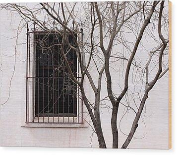 Mission Church Window Wood Print by Joe Kozlowski
