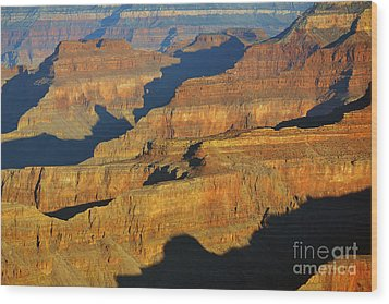 Morning Color And Shadow Play In Grand Canyon National Park Wood Print by Shawn O'Brien