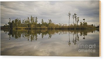 Perfect Lake Wood Print by Tim Hester