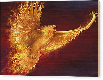 Phoenix Rising Wood Print by Tom Wood