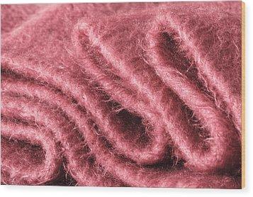 Pink Scarf Wood Print by Tom Gowanlock