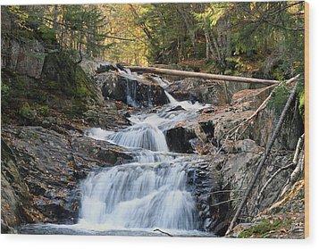Roaring Brook Falls Wood Print by Brett Pelletier