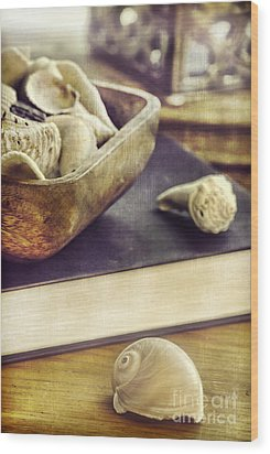 Seashells Wood Print by HD Connelly