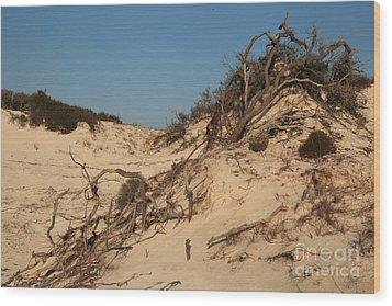 St Joseph Sand Dunes Wood Print by Adam Jewell