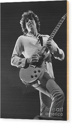 Stone Temple Pilots - Dean Deleo Wood Print by Concert Photos