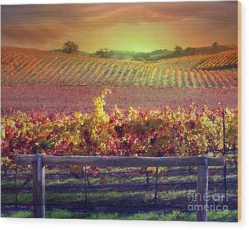 Sunrise Vineyard Wood Print by Stephanie Laird