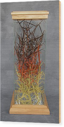 The Point Is Transition Wood Print by Lonnie C Tapia