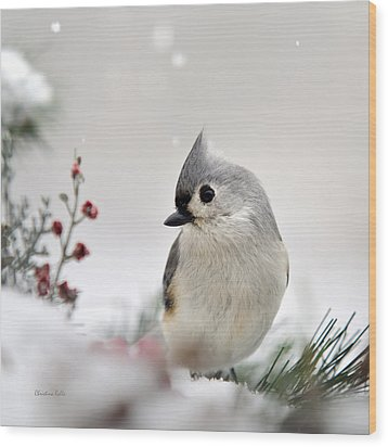 Tufted Titmouse Square Wood Print by Christina Rollo