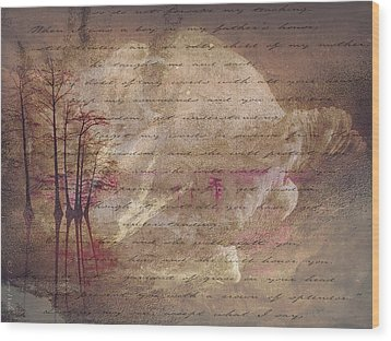 Abstract Wood Print by J Larry Walker