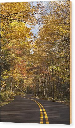 Autumn Drive Wood Print by Andrew Soundarajan