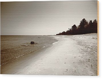 Lake Huron Wood Print by Frank Romeo