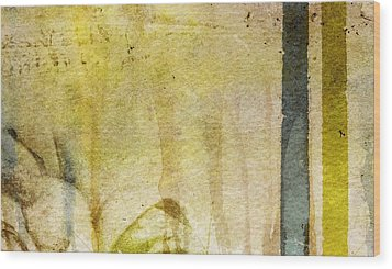 Music Of My Life Wood Print by Brett Pfister