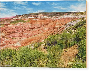 Painted Desert National Park Panorama Wood Print by Bob and Nadine Johnston