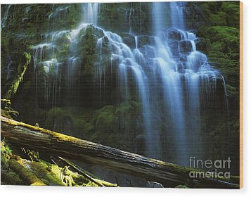 Proxy Falls Oregon Wood Print by Bob Christopher