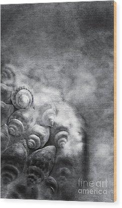 Sea Treasures Wood Print by VIAINA Visual Artist