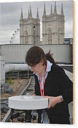 Solar Radiation Monitoring Wood Print by Public Health England