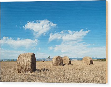 Straw Bales At A Stubbel Field Wood Print by Svetoslav Radkov