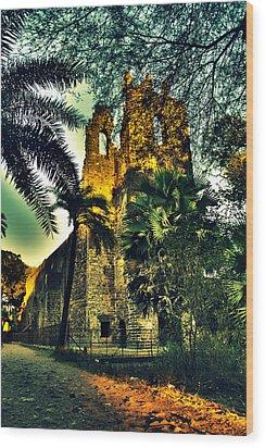 Vasai Fort Wood Print by Salman Ravish
