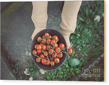 Fresh Tomatoes Wood Print by Mythja  Photography
