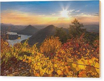 Golden Hour Wood Print by Debra and Dave Vanderlaan