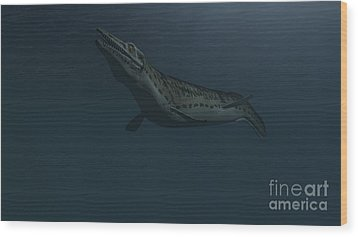 Mosasaur Swimming In Prehistoric Waters Wood Print by Kostyantyn Ivanyshen