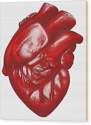 The Human Heart Wood Print by Dennis Potokar