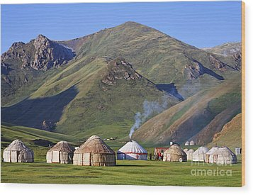 Yurts In The Tash Rabat Valley Of Kyrgyzstan  Wood Print by Robert Preston